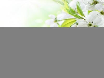 Fotolia_31950432_XXL.jpg